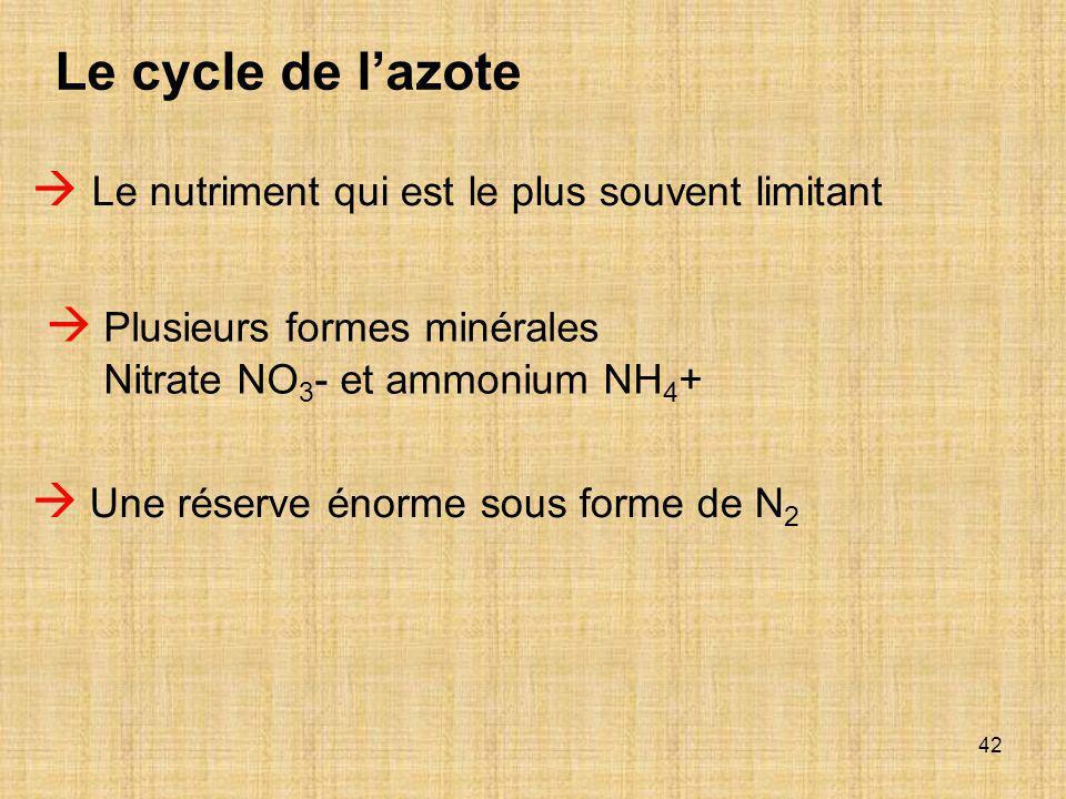 42  Le nutriment qui est le plus souvent limitant  Plusieurs formes minérales Nitrate NO 3 - et ammonium NH 4 +  Une réserve énorme sous forme de N