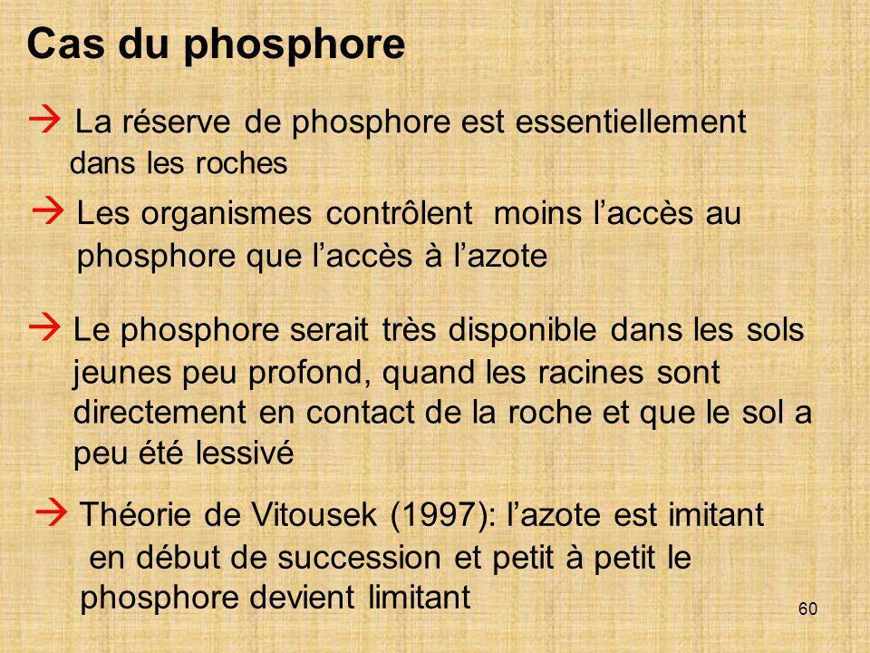 60  La réserve de phosphore est essentiellement dans les roches  Les organismes contrôlent moins l'accès au phosphore que l'accès à l'azote  Le pho