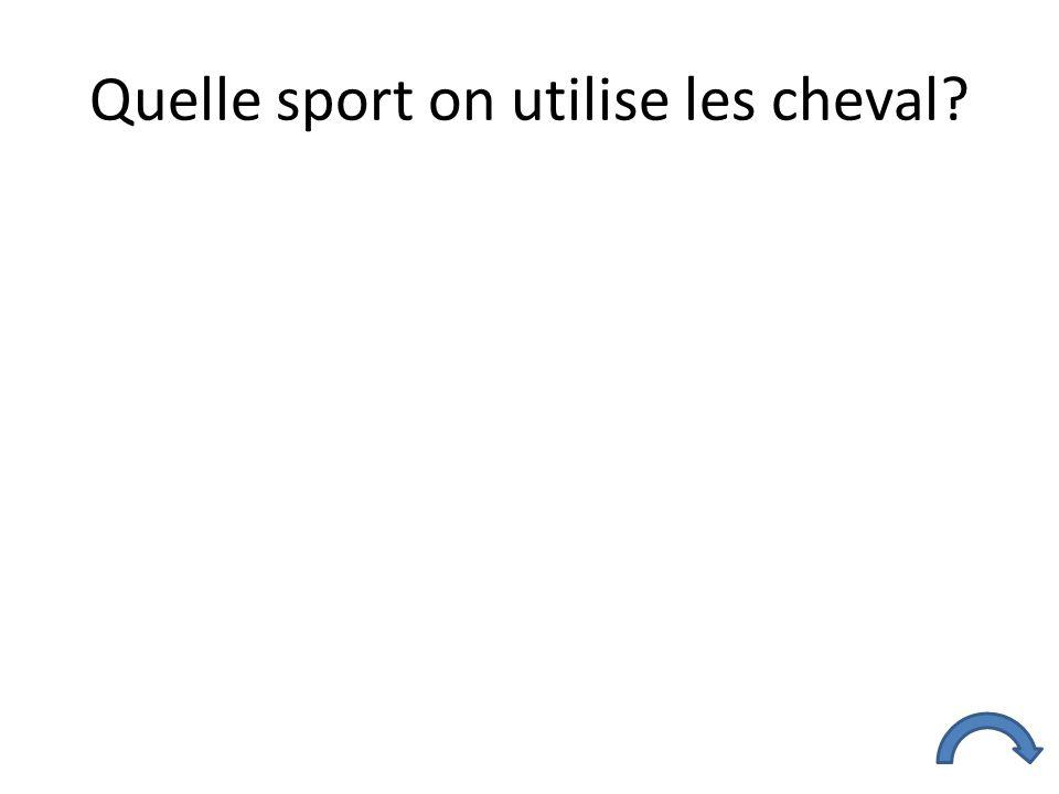 Quelle sport on utilise les cheval