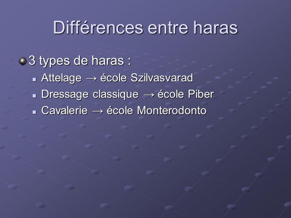 Différences entre haras 3 types de haras :  Attelage → école Szilvasvarad  Dressage classique → école Piber  Cavalerie → école Monterodonto