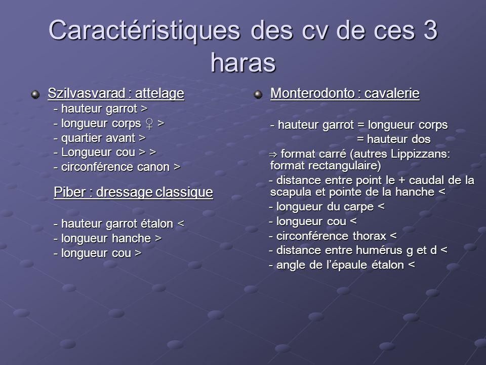 Caractéristiques des cv de ces 3 haras Szilvasvarad : attelage - hauteur garrot > - longueur corps ♀ > - quartier avant > - Longueur cou > > - circonf