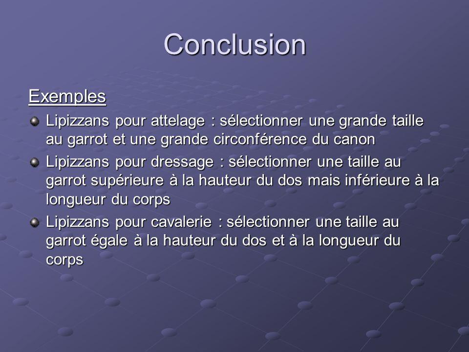 Conclusion Exemples Lipizzans pour attelage : sélectionner une grande taille au garrot et une grande circonférence du canon Lipizzans pour dressage :