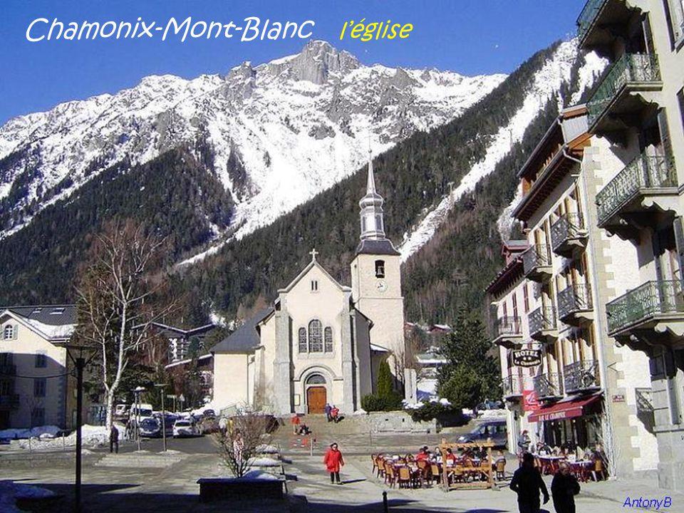 Chamonix-Mont-Blanc la ville vue de l'aiguille du Midi