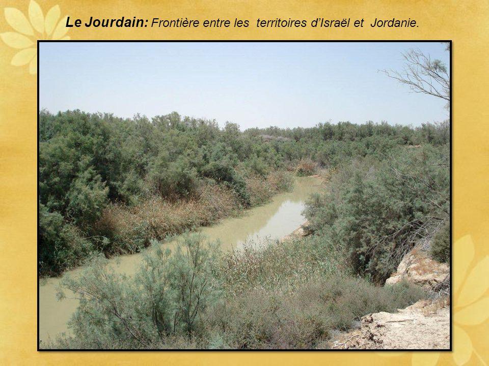 Le mont Nébo. Site présumé du tombeau de Moïse C'est une étape pour les voyageurs en terre sainte. Le mont jouit d'un panorama somptueux