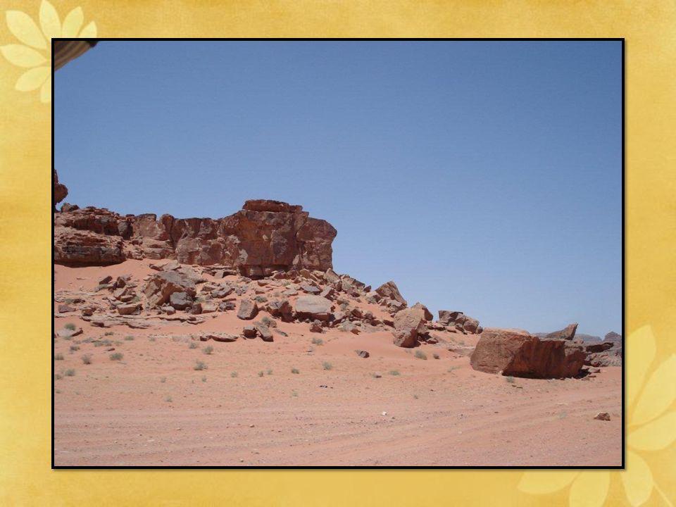 Les Bédouins : Connaisseurs, amoureux de leur territoire, servent aujourd'hui de guides aux visiteurs