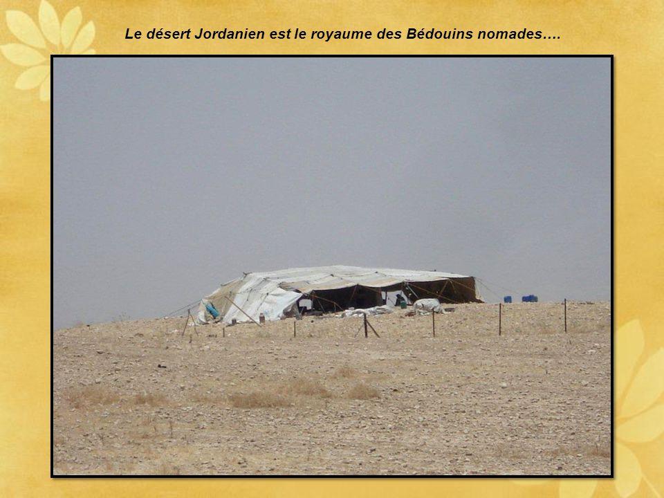 La citadelle d'Amman avec le temple d'Hercule
