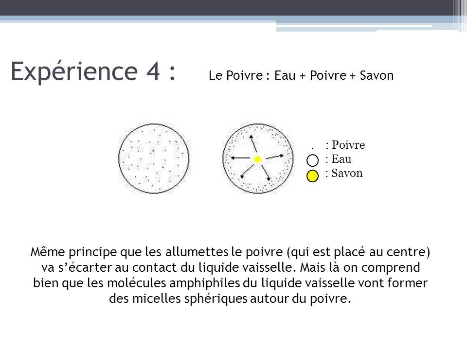 Expérience 4 : Le Poivre : Eau + Poivre + Savon. : Poivre : Eau : Savon Même principe que les allumettes le poivre (qui est placé au centre) va s'écar