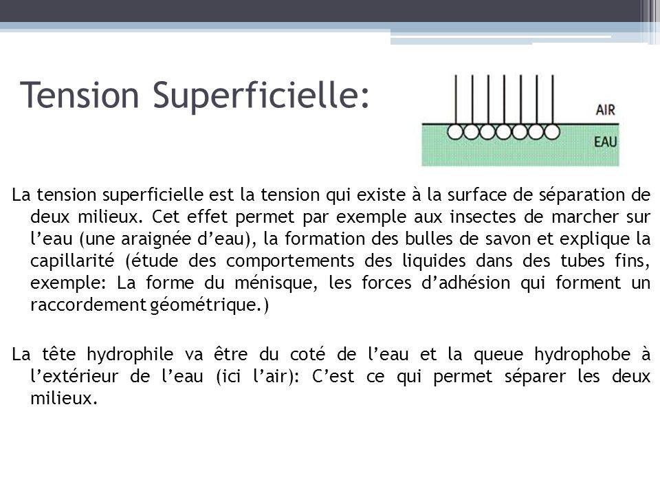 Tension Superficielle: La tension superficielle est la tension qui existe à la surface de séparation de deux milieux. Cet effet permet par exemple aux