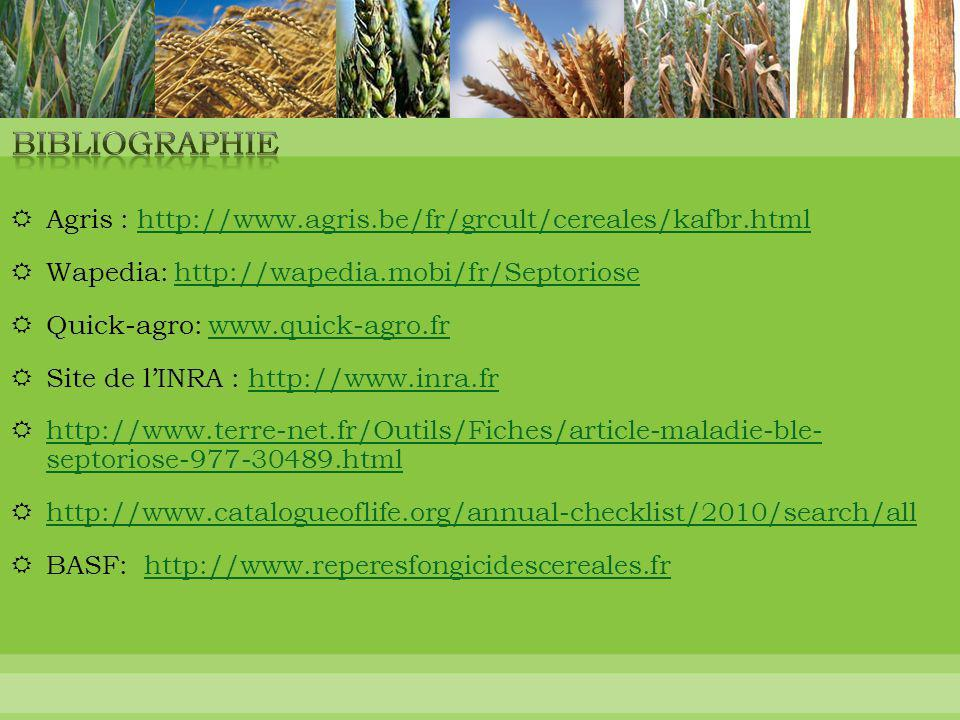  Agris : http://www.agris.be/fr/grcult/cereales/kafbr.htmlhttp://www.agris.be/fr/grcult/cereales/kafbr.html  Wapedia: http://wapedia.mobi/fr/Septori