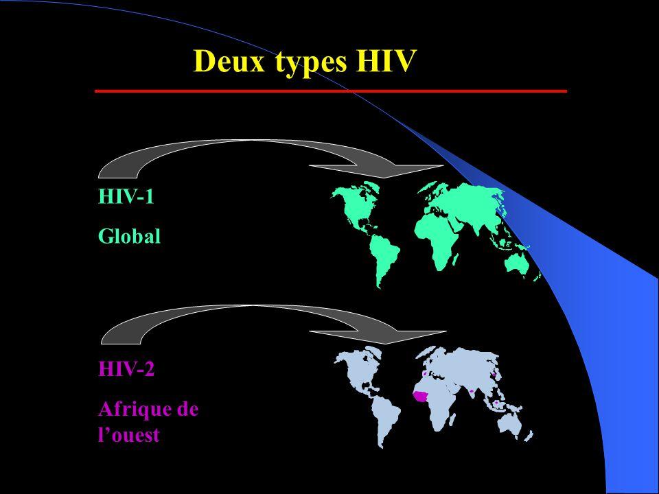 SIVagmSAB HIV-1/ N HIV-1/ M VIH-1/ O Grivet Tantalus Vervet SIVcpz/SIVgor /HIV-1 SIVwrc SIVmus SIVgsn SIVmon SIVery SIVasc SIVtal SIVmnd-2/drl SIVcol SIVdeb SIVsyk SIVagm SIVrcm SIVolc SIVsmm/ HIV-2 SIVden SIVbkm SIV lho/sun/mnd-1 Au moins 40 especes infectes Seulement chez les primates africains Chaque espèce est infecté avec un SIV spécifique « species-specific SIV » Code de 3 lettres pour l'espèce Ex.