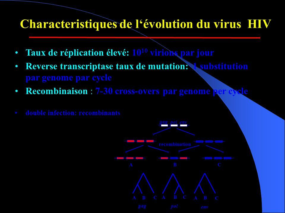 Characteristiques de l'évolution du virus HIV •Taux de réplication élevé: 10 10 virions par jour •Reverse transcriptase taux de mutation: 1 substitution par genome par cycle •Recombinaison : 7-30 cross-overs par genome per cycle •double infection: recombinants gag pol env recombination A B C gag BAC pol AB C env ABC