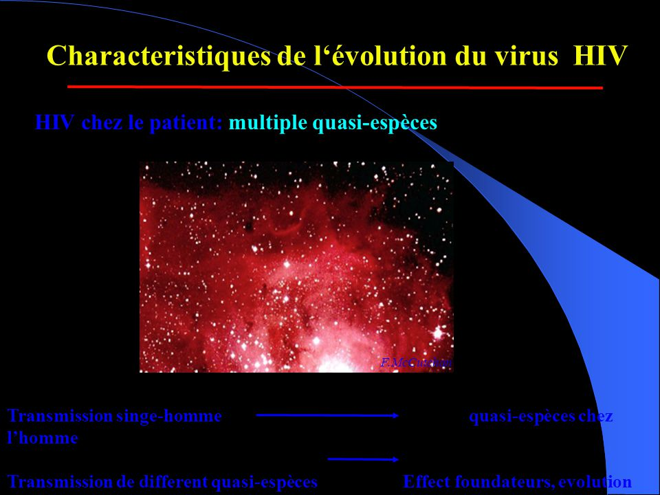 Infection VIH : fusion membranaire