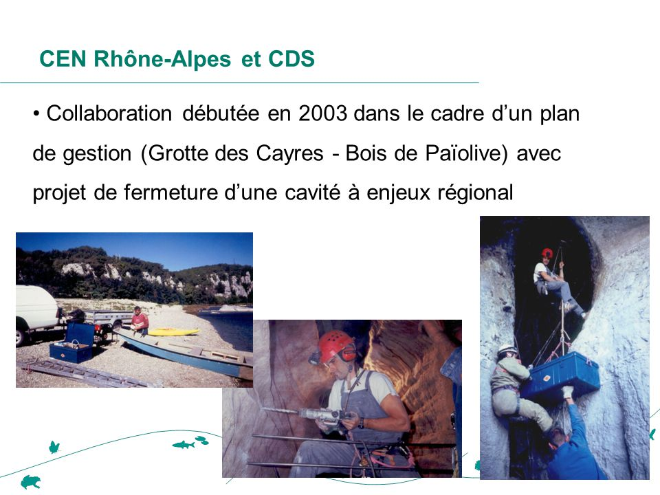 CEN Rhône-Alpes et CDS • Collaboration débutée en 2003 dans le cadre d'un plan de gestion (Grotte des Cayres - Bois de Païolive) avec projet de fermet