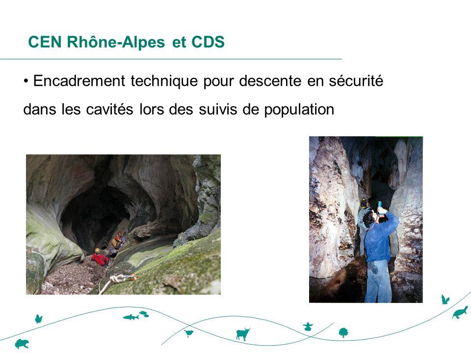 CEN Rhône-Alpes et CDS • Encadrement technique pour descente en sécurité dans les cavités lors des suivis de population