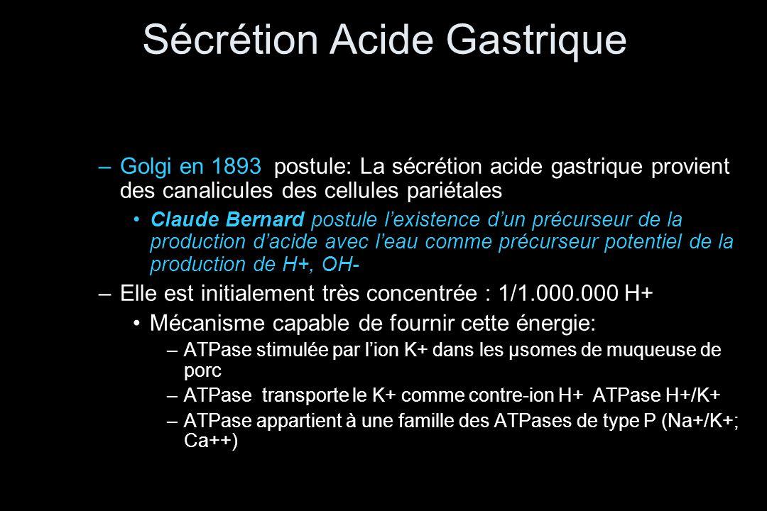 Sécrétion Acide Gastrique –Golgi en 1893 postule: La sécrétion acide gastrique provient des canalicules des cellules pariétales •Claude Bernard postul