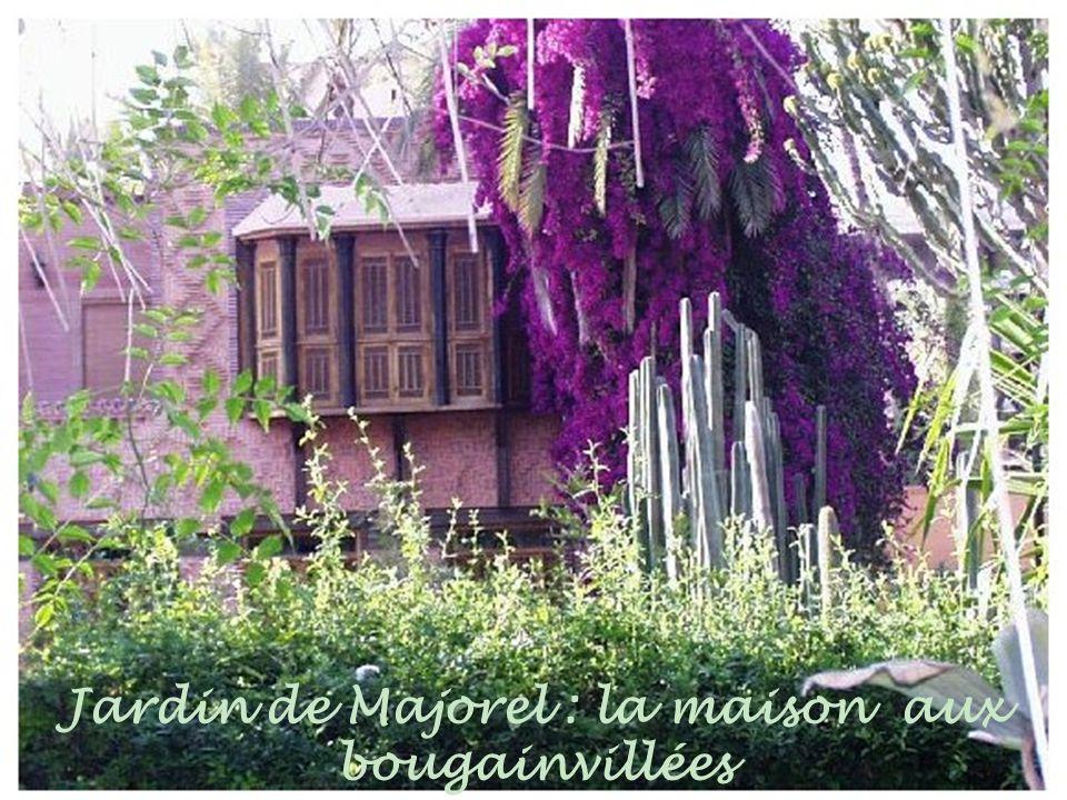 Jardins de Majorel : le bassin