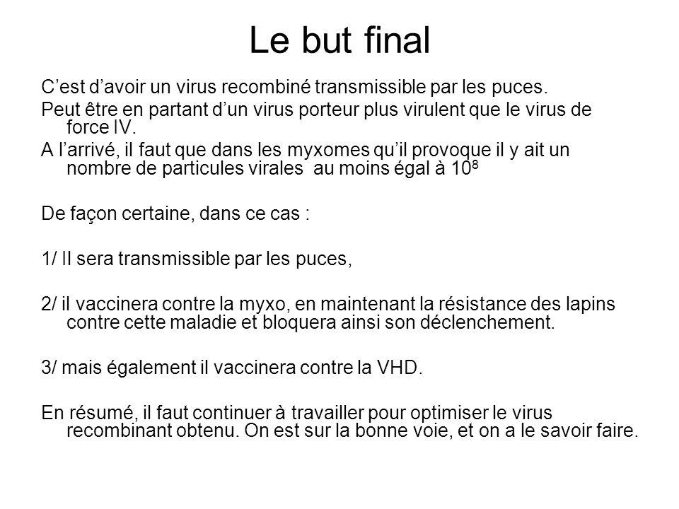 Le but final C'est d'avoir un virus recombiné transmissible par les puces.