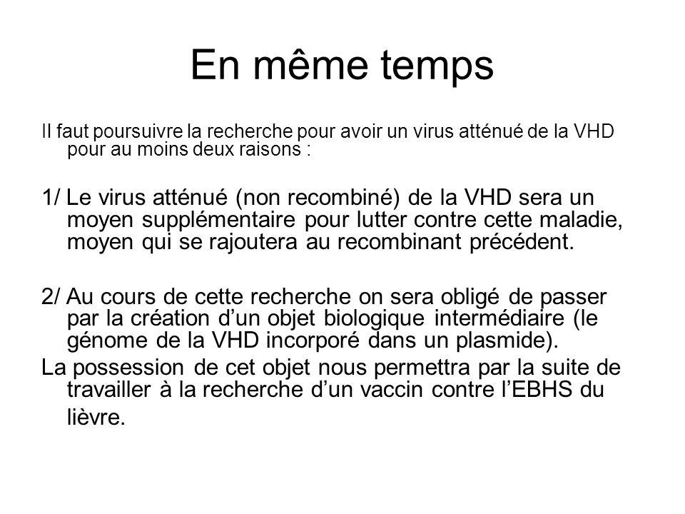 En même temps Il faut poursuivre la recherche pour avoir un virus atténué de la VHD pour au moins deux raisons : 1/ Le virus atténué (non recombiné) de la VHD sera un moyen supplémentaire pour lutter contre cette maladie, moyen qui se rajoutera au recombinant précédent.
