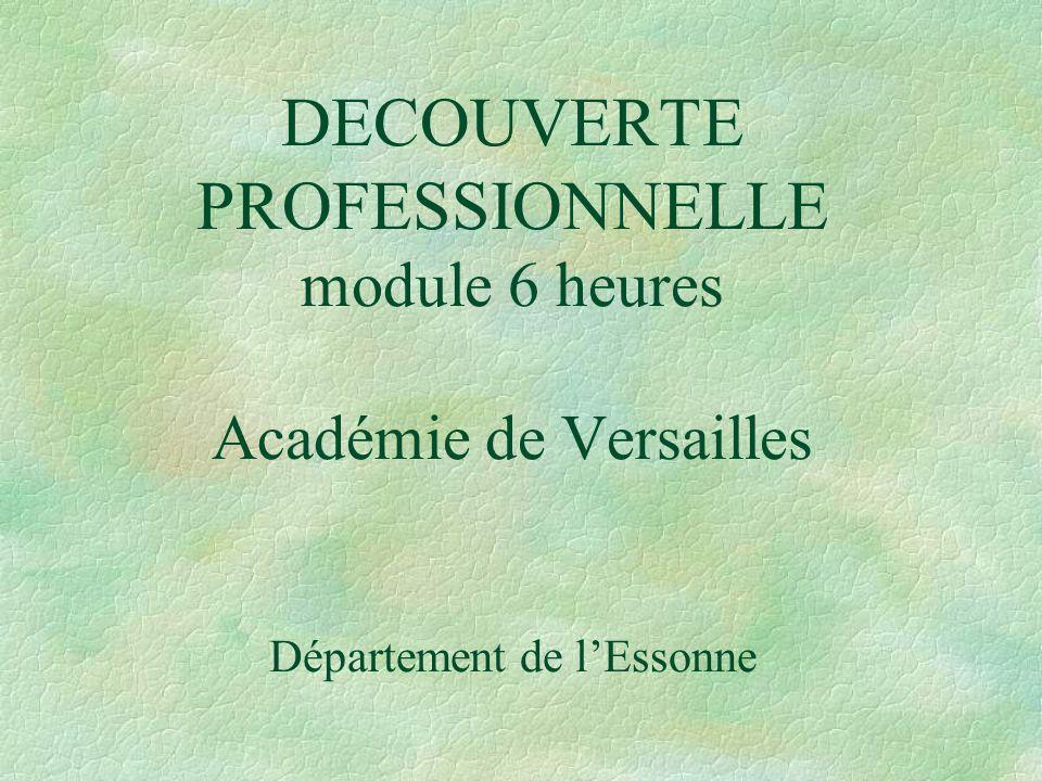 DECOUVERTE PROFESSIONNELLE module 6 heures Académie de Versailles Département de l'Essonne
