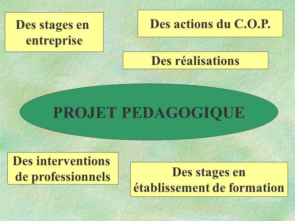 PROJET PEDAGOGIQUE Des stages en entreprise Des actions du C.O.P.
