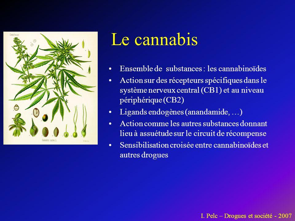 Le cannabis •Ensemble de substances : les cannabinoïdes •Action sur des récepteurs spécifiques dans le système nerveux central (CB1) et au niveau péri