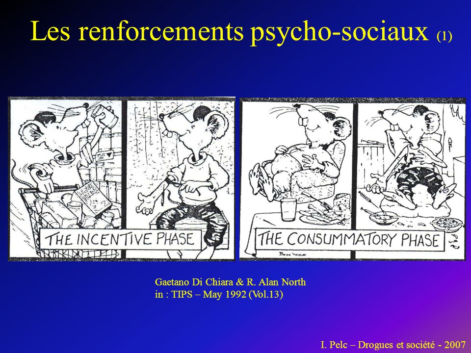 Les renforcements psycho-sociaux (1) Gaetano Di Chiara & R. Alan North in : TIPS – May 1992 (Vol.13) I. Pelc – Drogues et société - 2007