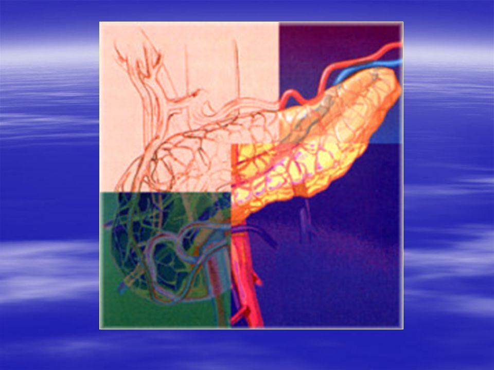 Pancréatite aiguë  Causes : –Alcoolisme chronique +++ –Lithiase biliaire +++ –Métabolique (calcium, triglycérides) –Médicaments –Tumeurs –Maladies de système  Terrain –Homme, 40-45 ans –Femme, 60-65 ans  Symptômes –Douleur, tableau d'urgence chirurgicale –Gravité variée (défaillances viscérales)  Diagnostic –Enzymes (lipasémie > 3 N) –TDM