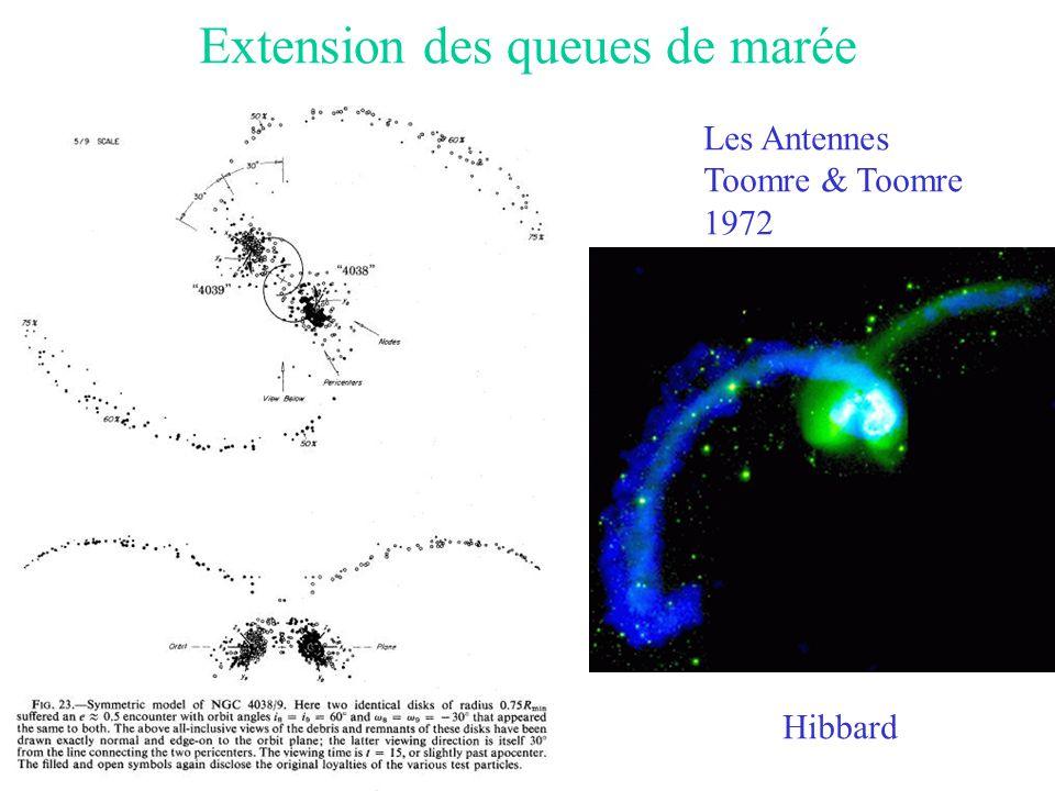 Extension des queues de marée Les Antennes Toomre & Toomre 1972 Hibbard