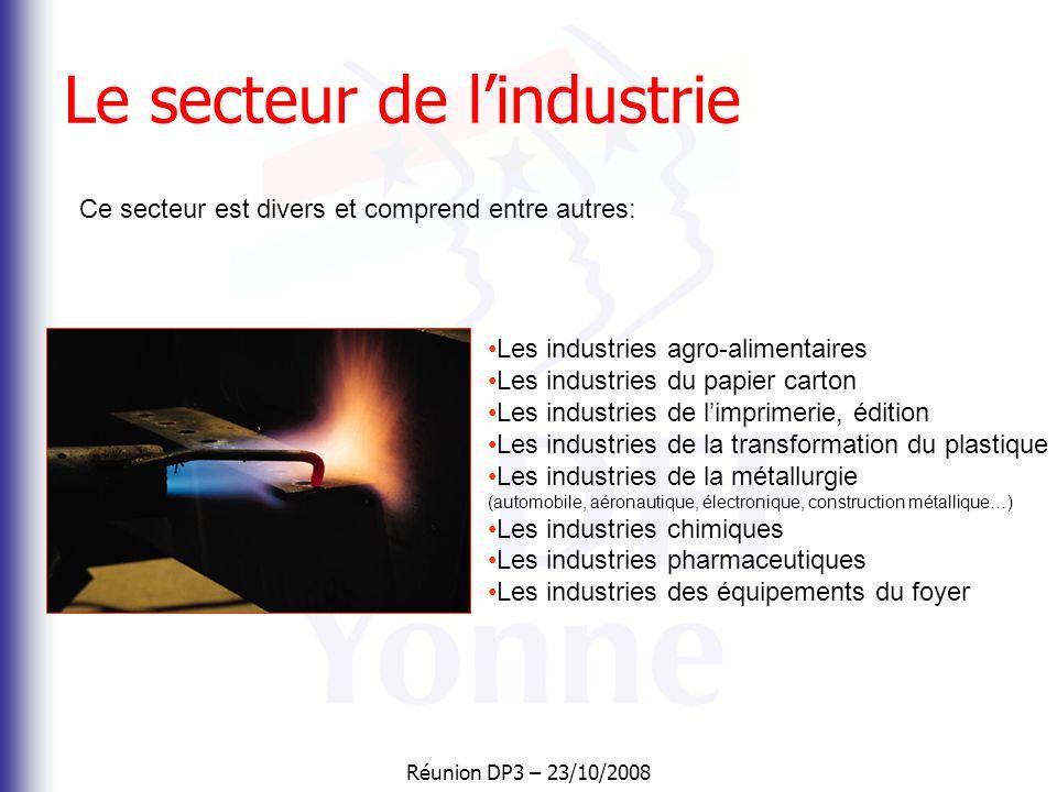 Réunion DP3 – 23/10/2008 Le secteur des services Il comprend : • le commerce (Décathlon, casino, Marionnaud…) • les assurances, les banques • conseils