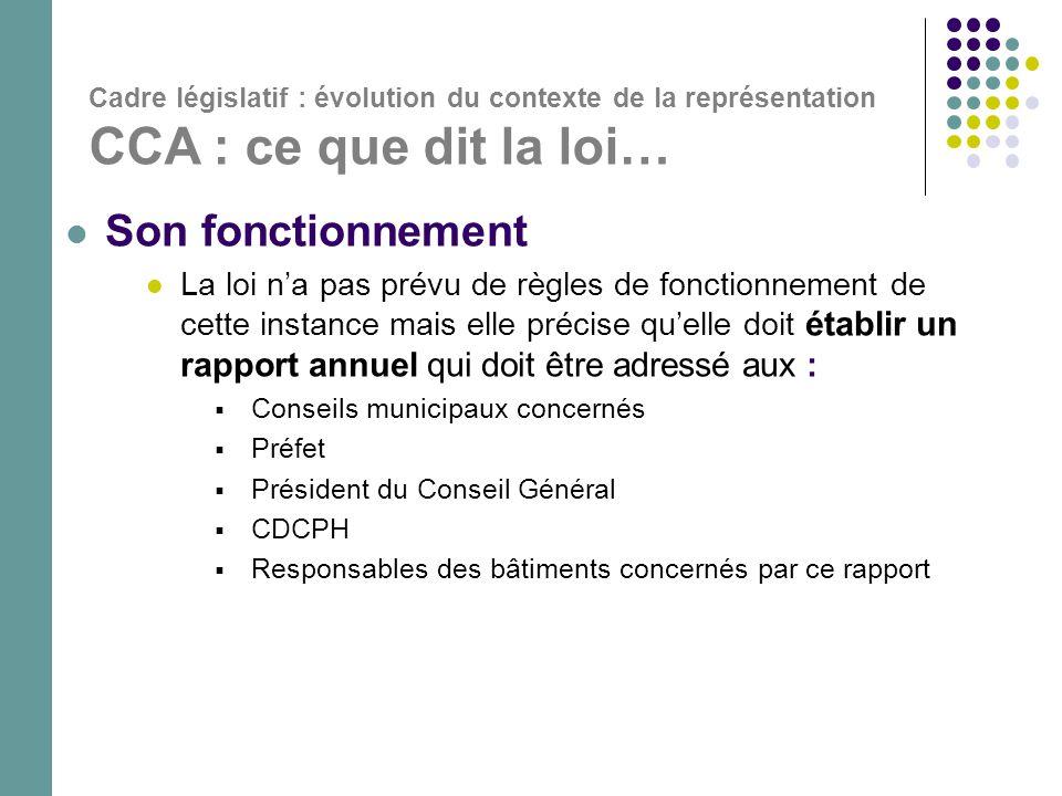 Cadre législatif : évolution du contexte de la représentation CCA : ce que dit la loi…  Son fonctionnement  La loi n'a pas prévu de règles de foncti