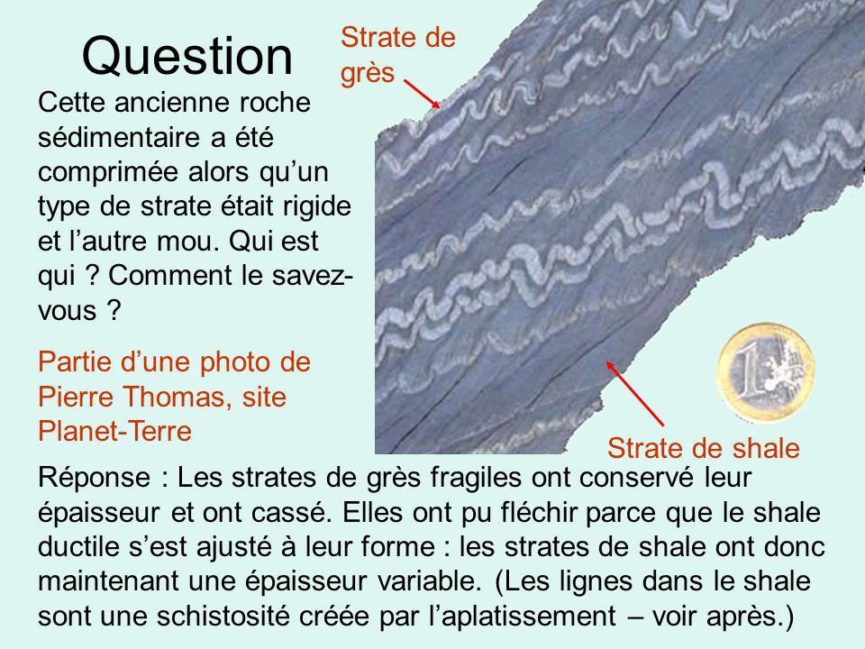 Question Strate de shale Strate de grès Cette ancienne roche sédimentaire a été comprimée alors qu'un type de strate était rigide et l'autre mou. Qui