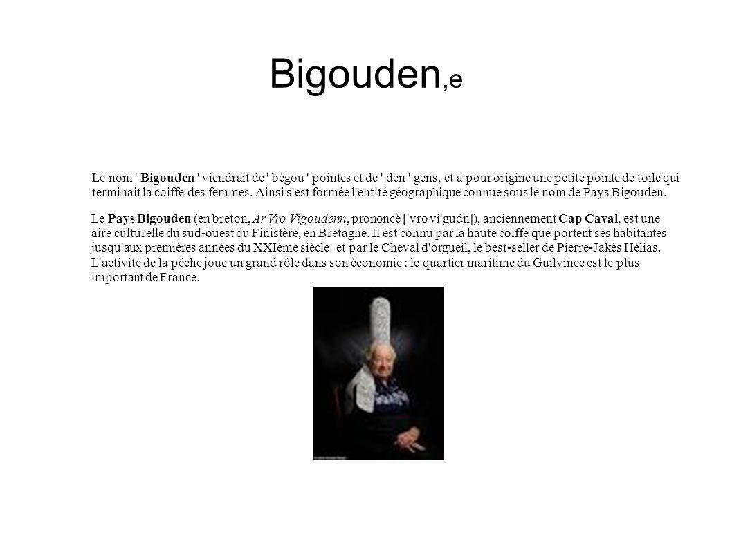 Bigouden,e Le nom ' Bigouden ' viendrait de ' bégou ' pointes et de ' den ' gens, et a pour origine une petite pointe de toile qui terminait la coiffe