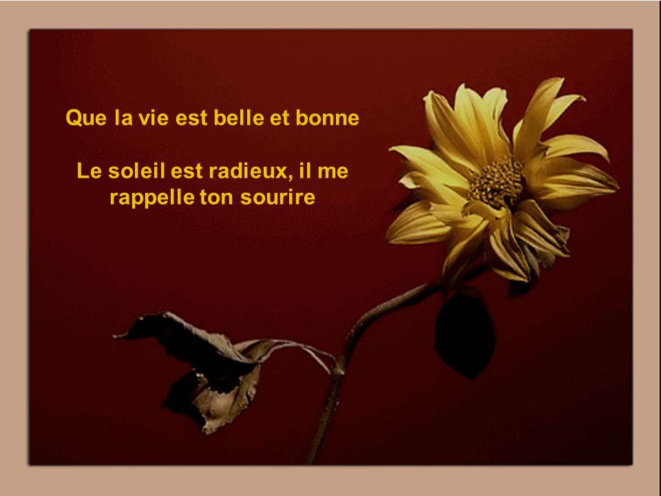 Un autre poème de Théma « TOUTE UNE BELLE JOURNÉE » Musique de méditation.