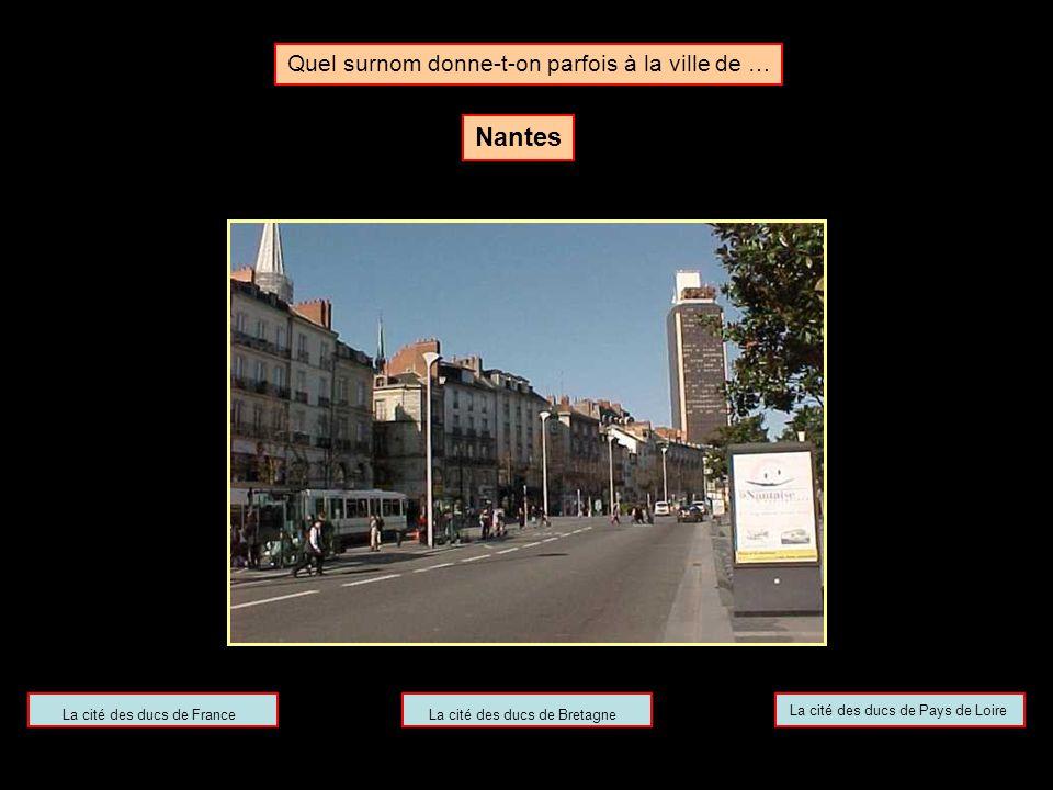 Clique ici pour continuer Toulouse est appelée la ville rose, du fait de la couleur du matériau de construction traditionnel local, la brique de terre cuite.