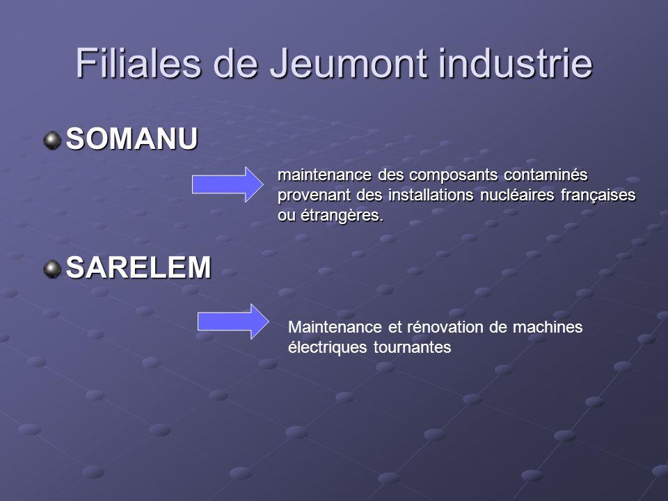 Filiales de Jeumont industrie SOMANU SARELEM maintenance des composants contaminés provenant des installations nucléaires françaises ou étrangères.