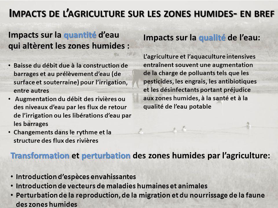I MPACTS DE L ' AGRICULTURE SUR LES ZONES HUMIDES - EN BREF quantité Impacts sur la quantité d'eau qui altèrent les zones humides : • Baisse du débit