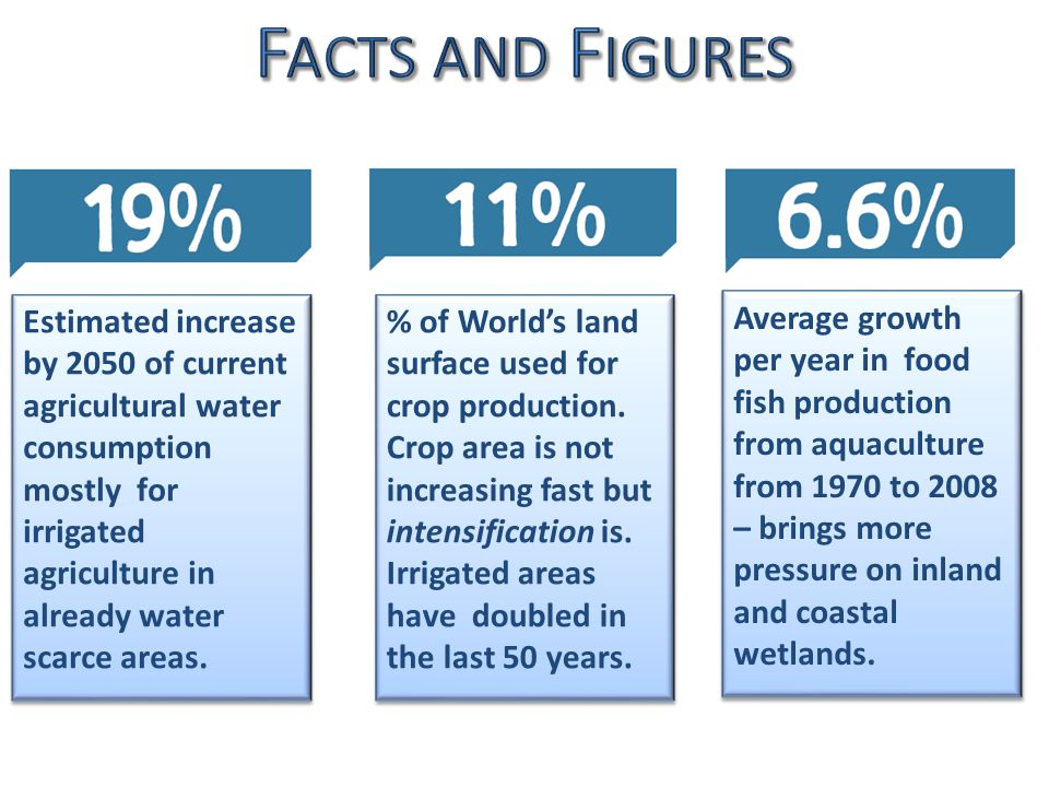 Average growth per year in food fish production from aquaculture from 1970 to 2008 – brings more pressure on inland and coastal wetlands.