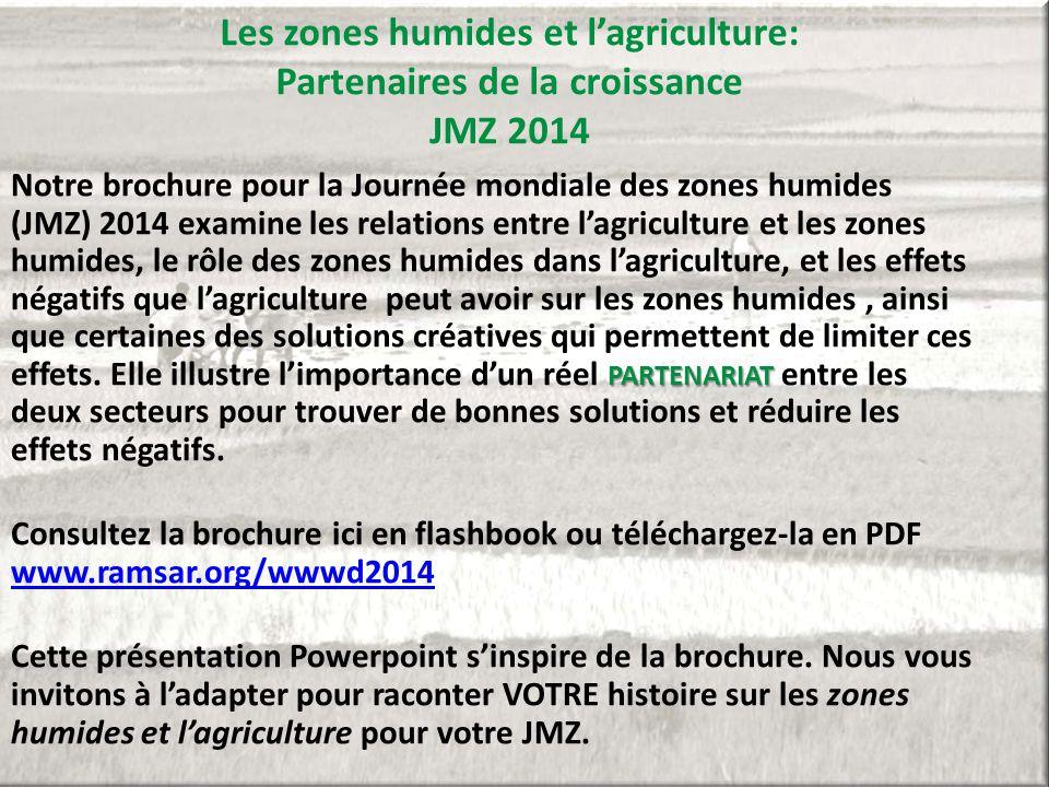 Les zones humides et l'agriculture: Partenaires de la croissance JMZ 2014 PARTENARIAT Notre brochure pour la Journée mondiale des zones humides (JMZ)