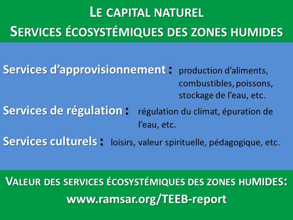 Services d'approvisionnement : Services de régulation : Services culturels : Services d'approvisionnement : production d'aliments, combustibles, poiss