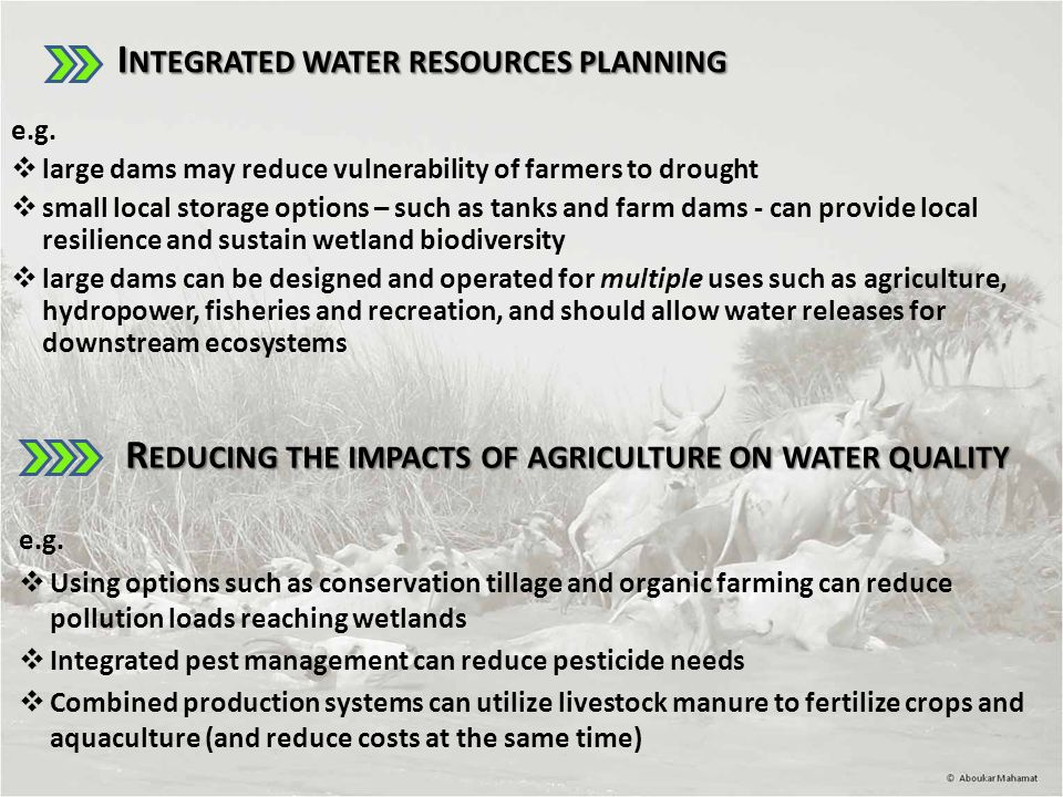 I NTEGRATED WATER RESOURCES PLANNING I NTEGRATED WATER RESOURCES PLANNING e.g.
