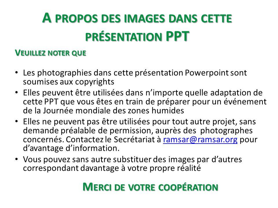 A PROPOS DES IMAGES DANS CETTE PRÉSENTATION PPT V EUILLEZ NOTER QUE • Les photographies dans cette présentation Powerpoint sont soumises aux copyright