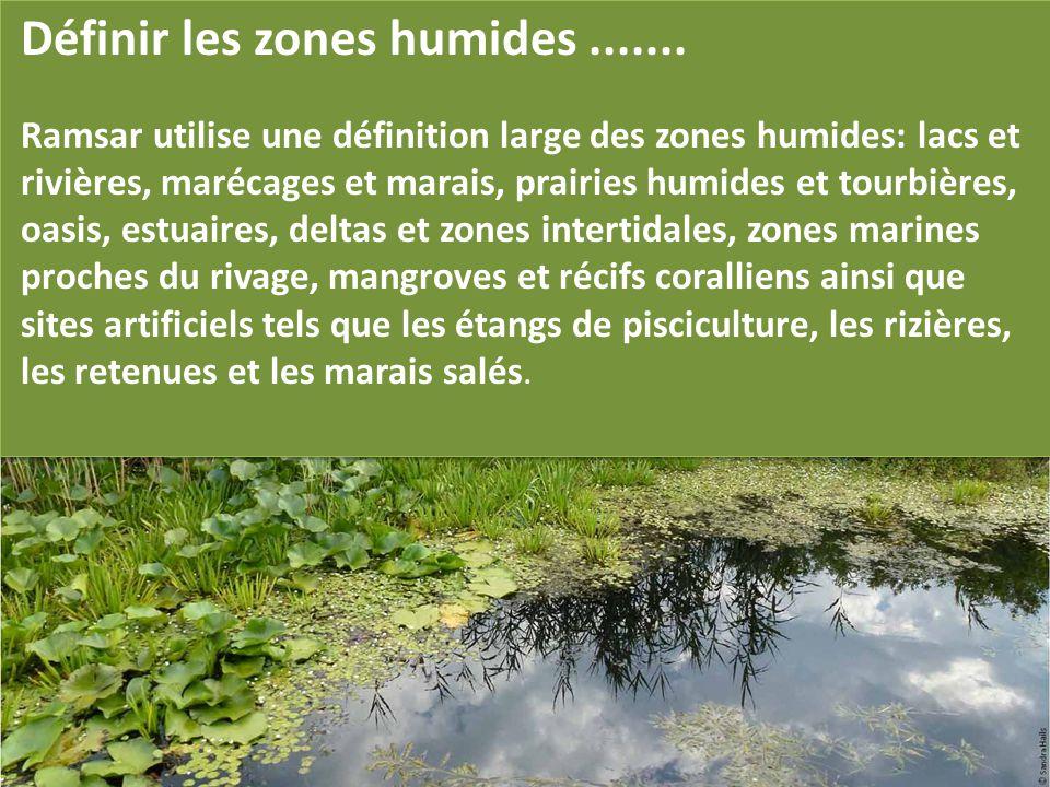 Définir les zones humides....... Ramsar utilise une définition large des zones humides: lacs et rivières, marécages et marais, prairies humides et tou