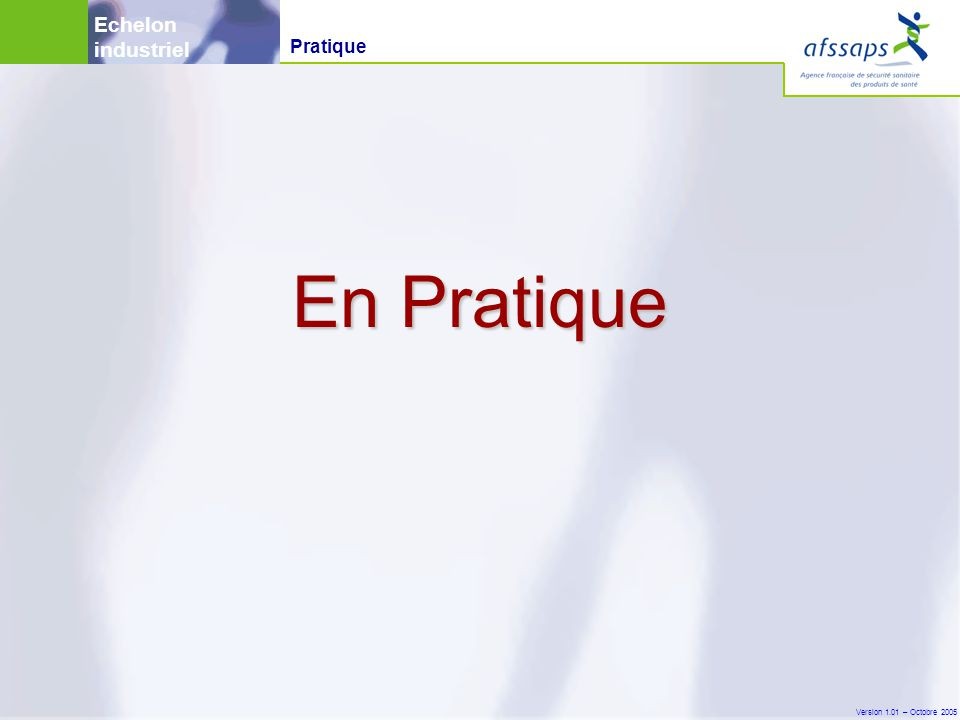 Version 1.01 – Octobre 2005 En Pratique Pratique Echelon industriel