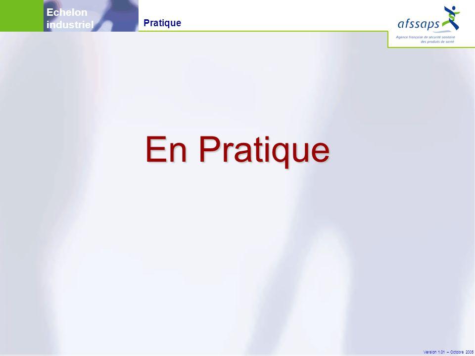 Version 1.01 – Octobre 2005 En Pratique Pratique Echelon industriel