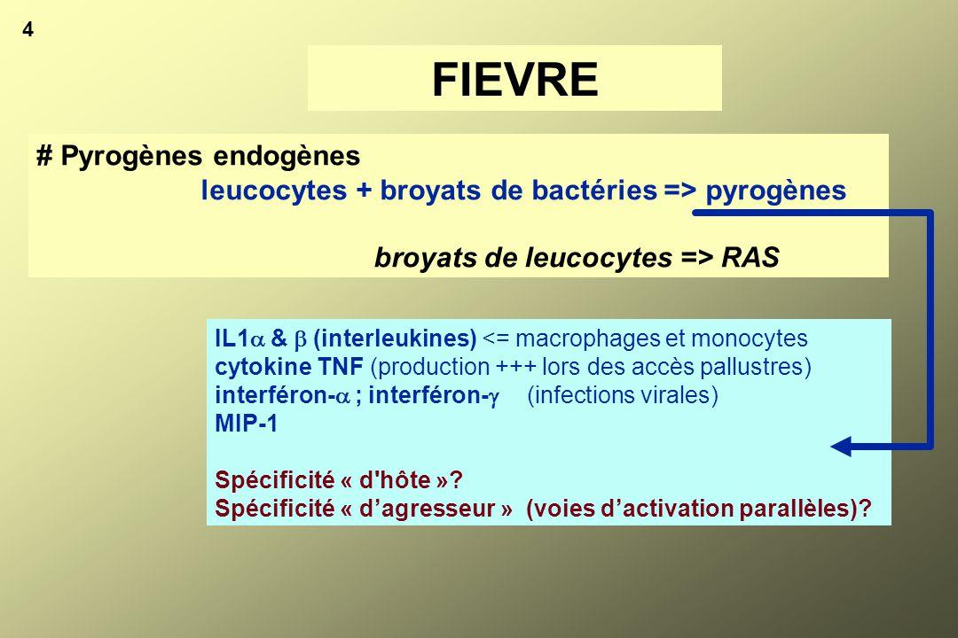 4 FIEVRE # Pyrogènes endogènes leucocytes + broyats de bactéries => pyrogènes broyats de leucocytes => RAS IL1  &  (interleukines) <= macrophages et
