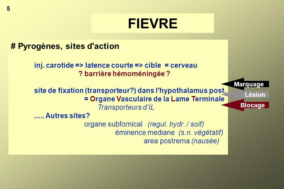# Substances antipyrétiques endogènes, AVP (récepteurs): = Récepteurs périphériques: V1 (vasopresseur), V2 (antidiurétique) = Récepteurs septaux = V1 (antagoniste V1 dans septum => fièvre) # AVP et médicaments antipyrétiques rappel: aspirine => diminue la réponse fébrile à la PGE = Effet annulé par des anticorps anti-AVP injection répétée de certains pyrogènes => tolérance à l'hyperthermie par augmentation de la synthèse d'AVP dans le septum = Effet potentialisé par l'indométhacine (les rats meurent d'hypothermie) 15 FIEVRE
