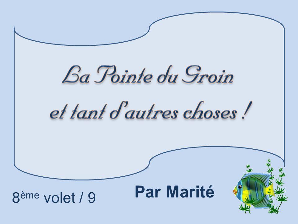 8 ème volet / 9 Par Marité