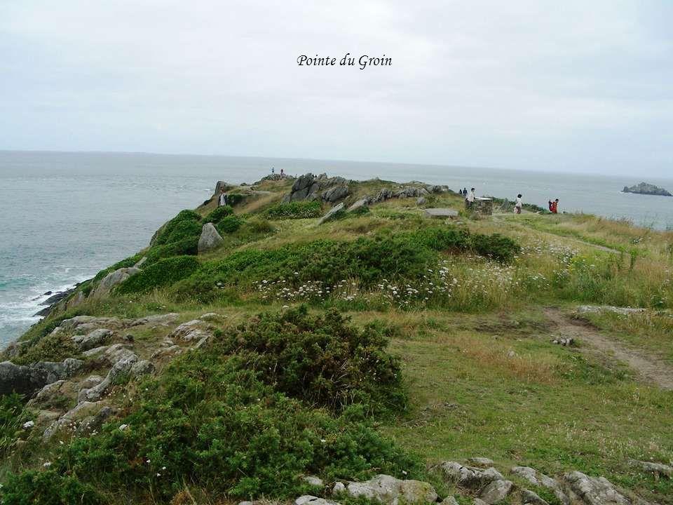 La pointe du Groin est la pointe la plus au nord de Cancale. Cette pointe sert à tracer la ligne de départ, de la course de la Route du Rhum. En face