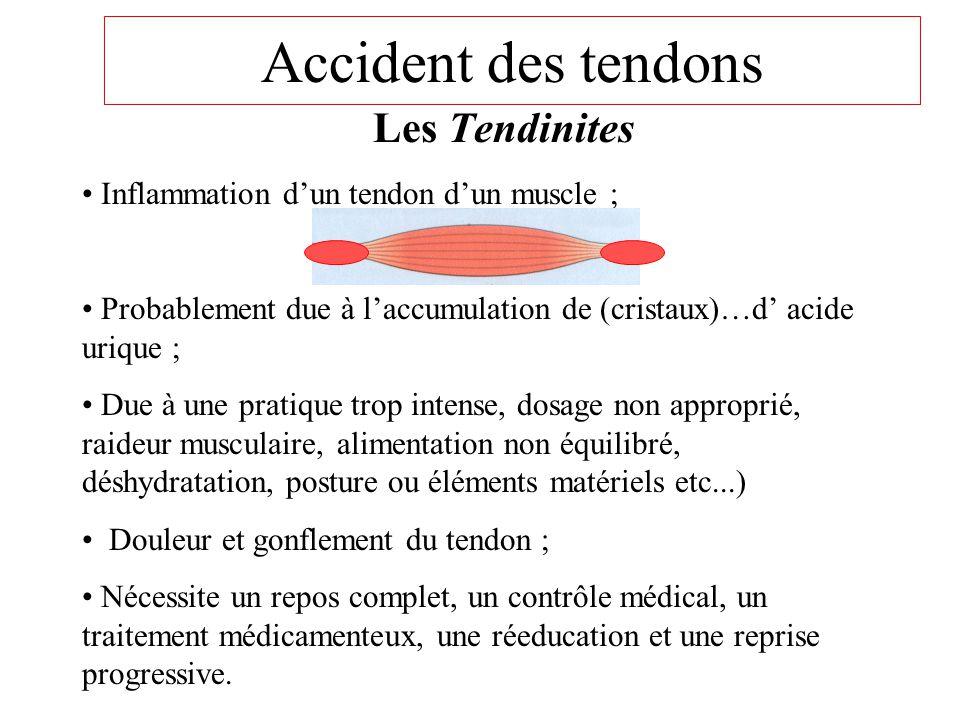 Rupture ligamentaire • Rupture du / des ligaments de l'articulation ; • Lors de l'entorse grave ou luxation ; • Le sujet sera suivi par un professionn