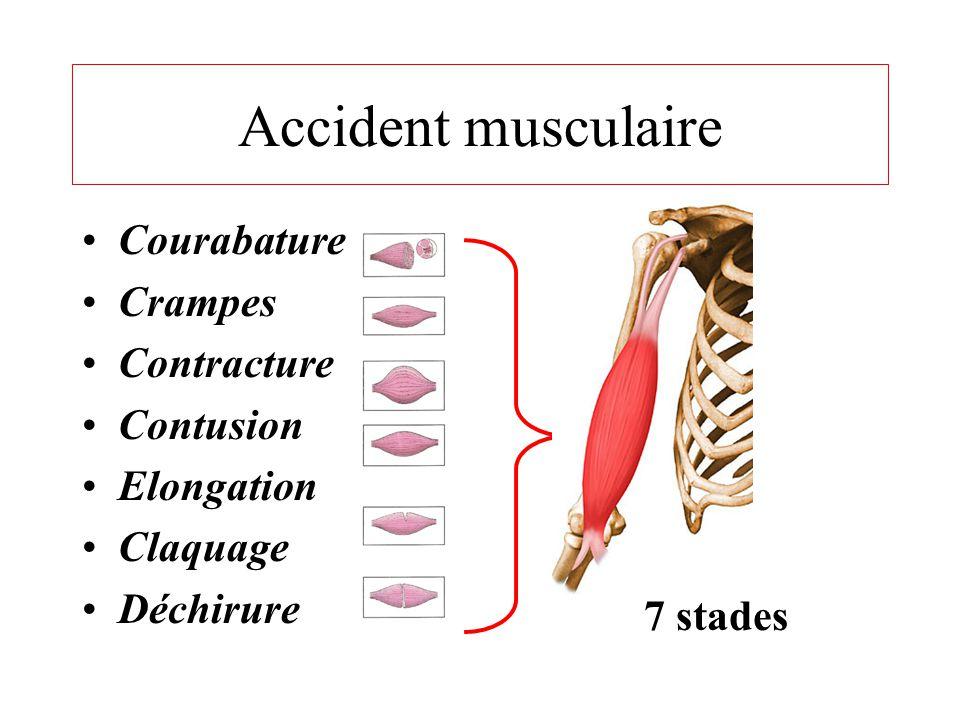 Rupture tendineuse • Accident brutal et handicapant ; • Due à un choc ou à la suite d'un saut ; • Impotence fonctionnelle nécessitant un arrêt immédia
